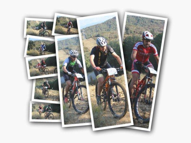 Collage 3 Etapa 3.jpg